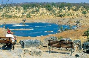 etosha-natl-park