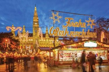 Vienna-Townhall-Christmas-Market,-Austria--1403_dt_35017829