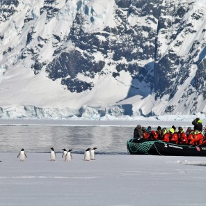 Latin America | Antarctica @spcanfield179